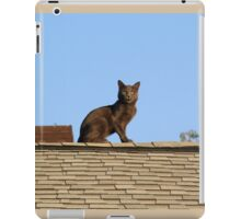 Cat on a Warm Shingle Roof iPad Case/Skin