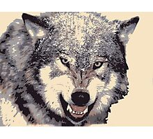 Wolf head in 5 colors Photographic Print
