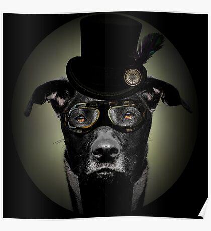 4.Dapper Eduardian Pit Bull in Steampunk Gear Poster