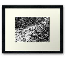BW11 Framed Print