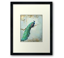 Elegant Peacock w Feathers on Branch Framed Print