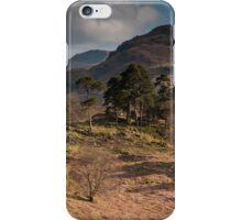 Nr Patterdale iPhone Case/Skin