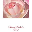Pink Rose Mother's Day Card by Mariola Szeliga