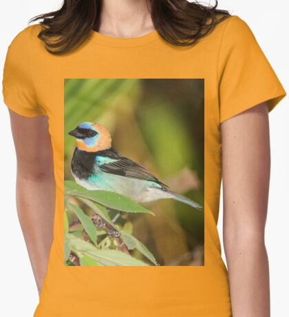 Golden-Hooded Tanager Womens Fitted T-Shirt