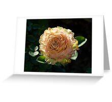 Rose in Bloom | La Rosa Donne d'Italia 150 Greeting Card