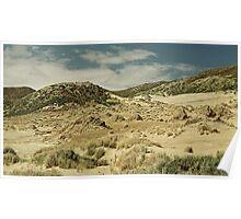 Sandymount dunescape 1 Poster