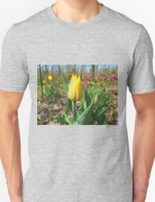 Single Yellow Tulip Unisex T-Shirt