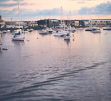 Falmouth Harbor, Cape Cod by Elizabeth Thomas