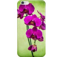 Orchid in Green iPhone Case/Skin