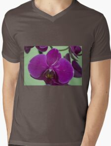 Orchid Macro Mens V-Neck T-Shirt