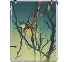 Blue Green Sunset Tree Branches iPad Case/Skin