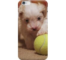 Jagger with Tennis Ball iPhone Case/Skin