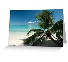 Cocos Direction Palm Greeting Card