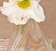 Bottled Begonia Flowers  Sticker