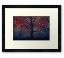 The Secret Forrest Framed Print