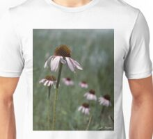Purple Coneflower Unisex T-Shirt