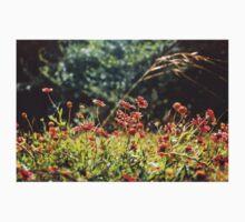 Texas. Indian blanket wildflowers. Kids Tee