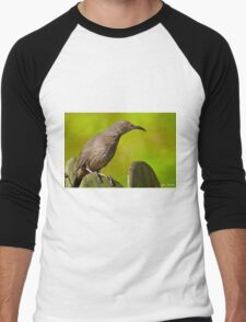 Curve-Billed Thrasher on a Prickly Pear Cactus Men's Baseball ¾ T-Shirt