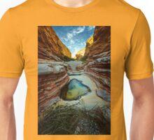 Ernst Canyon, Big Bend, Texas Unisex T-Shirt