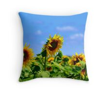 Turn Your Face to The Sun Throw Pillow
