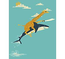 Giraffe riding shark Photographic Print