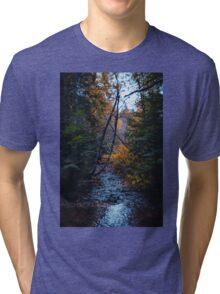 Dank forest Tri-blend T-Shirt