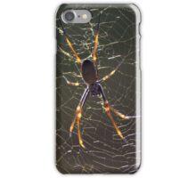 Orb Web iPhone Case/Skin