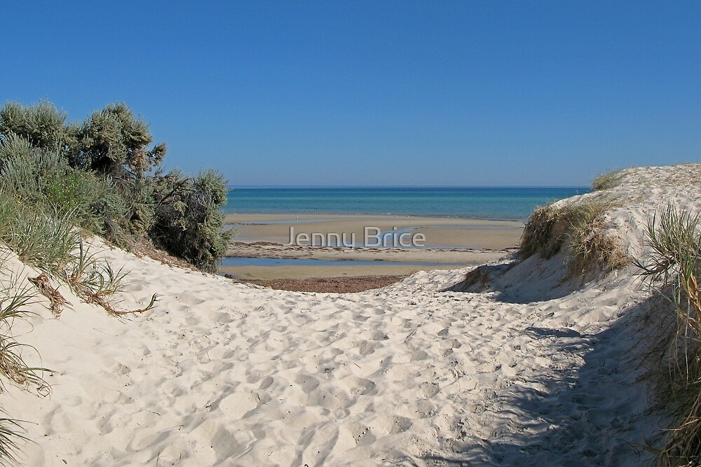 Dune Crossing by Jenny Brice