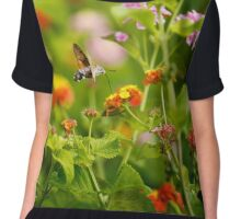 Hummingbird Moth Chiffon Top