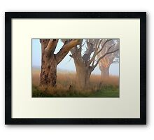 Three Giants - Ceres Framed Print