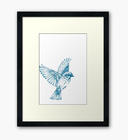 Vintage blue bird Framed Print