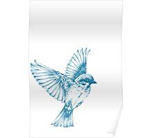 Vintage blue bird Poster