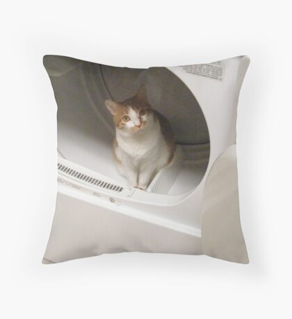 Can I Play Here? Throw Pillow
