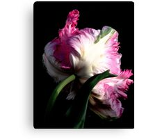 The Parrot Tulip An Artwork From Nature  Canvas Print