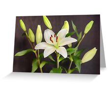 White Lilies in Vase Greeting Card