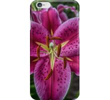 Lovely Lily iPhone Case/Skin