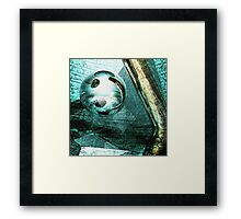 Shudder Before the Beautiful Framed Print