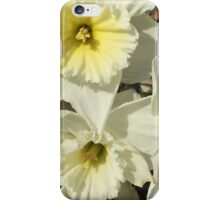 Spring Flowers - Snow Daffodil iPhone Case/Skin