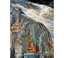 Maple Leaves Underlined at Livermore Falls Photographic Print