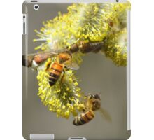 Bees & Cottonwood blooms iPad Case/Skin