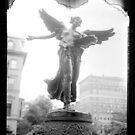 Angel Polaroid by Stephen Sheffield
