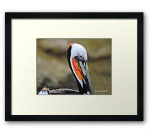 Colorful Personality Framed Print