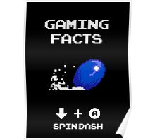 Gaming Facts Spin Dash Poster