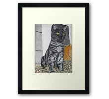 Reflecting the Day Framed Print