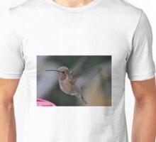 JUVENILE ANNA'S HUMMINGBIRD LANDING ON PERCH Unisex T-Shirt