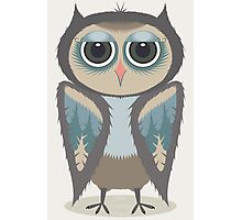 FEATHERED OWL Photographic Print
