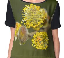 Pussy Willow Chiffon Top