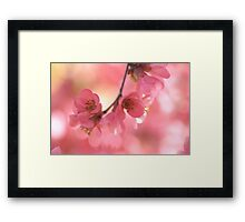 Sensual Touch Framed Print
