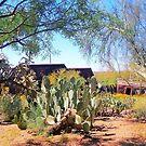 Apache Junction Ghost Mine - Arizona by Laurast