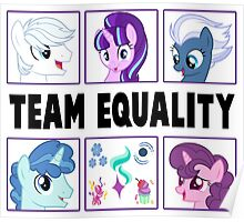TEAM EQUALITY - WHITE VERSION Poster